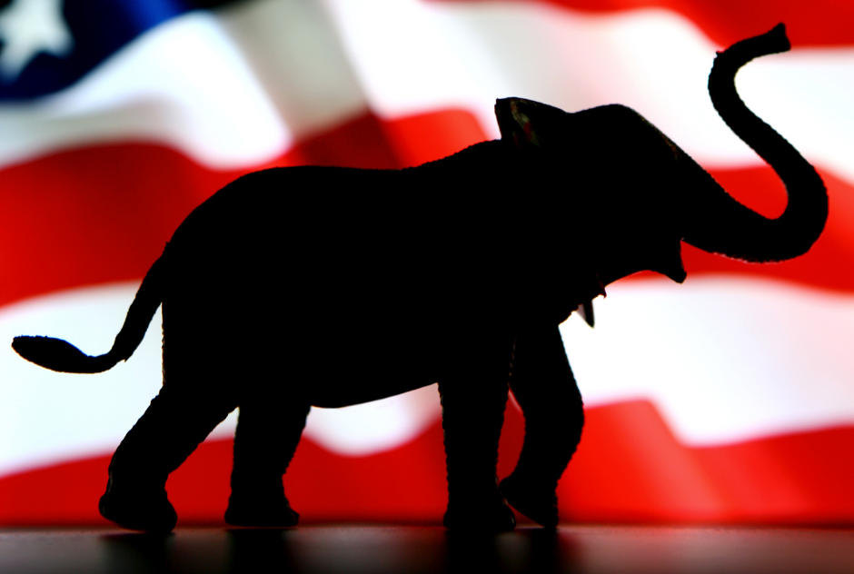Image of a elephant silhouetted against the US flag